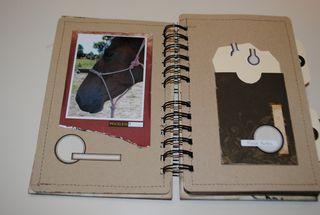 Crystal's horse mini (7)
